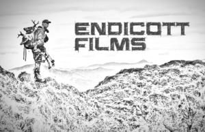 Endicott Films-Logo